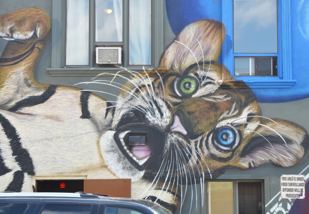 part of a large mural of a tiger cub playing with two balls, one red and one blue. The cub has one green eye and one blue eye. Covers the whole of the side of a building - head of the cub and part of the blue ball