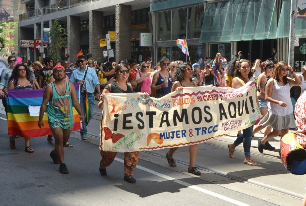 "walkers in a dyke march in Toronto - Latino, or Spanish speaking group with a baner that says"" Estamos Aqui"""