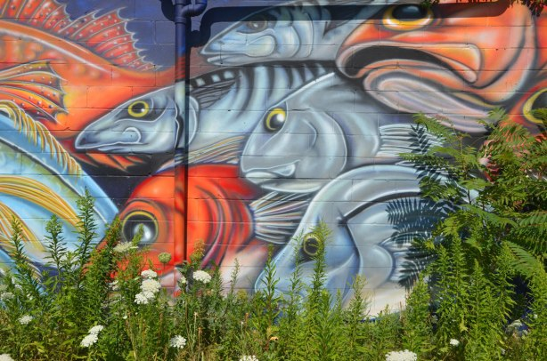 detail of a mural, fish heads, on a wall with Queens Annes lace and other weeds growing in front.