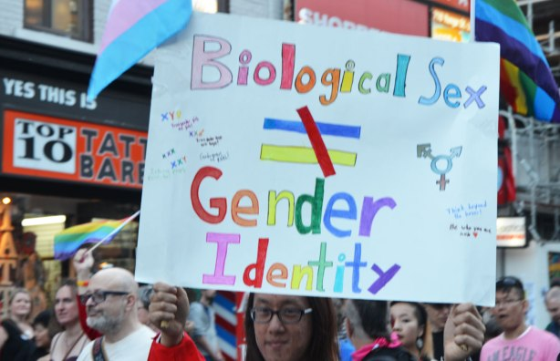 a woman in a parade is holding as sign that says Biological Sex does not equal gender identity