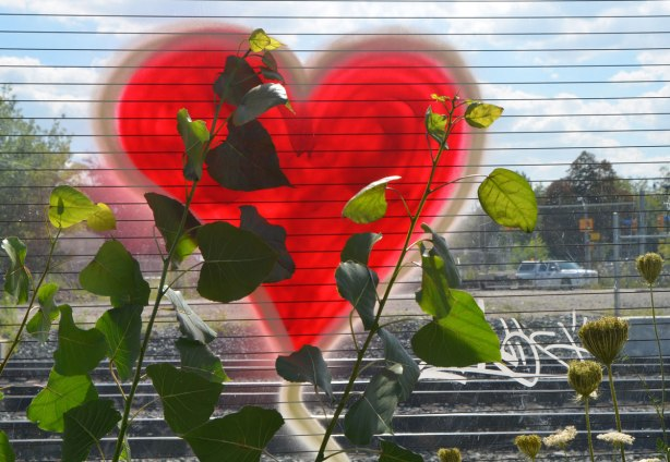 a bright red heart has been sprayed painted onto a glass wall, weeds growing front, train tracks behind, the sun shining through the glass.
