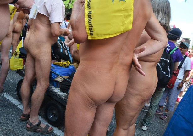 a group of naturists , mostly seen from the backside, naked bums, bare bodies