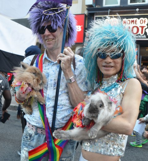 two men in a pride parade with wigs on, each carrying a rabbit