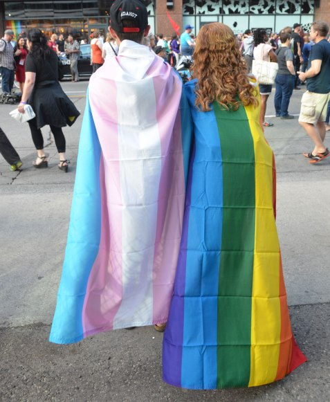a couple standing beside each other with their backs to the camera, one has a rainbow flag draped over her back and the other has a trans flag draped over his back.