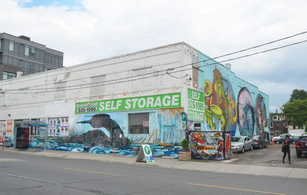 viewed from the corner so you can see two sides of the building, large mural of a water fowl sitting on the water on the old white Queen West self-storage building and another mural on the other side of the building