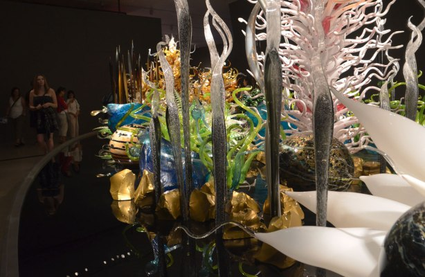 aquarium like structures, water plants, and large shells, made of glass, on a black glass reflective surface