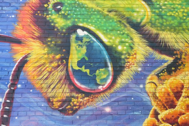 close up of a bee's eye in aa mural. A picture of part of the globe is in its eye - north america and the top part of south america.