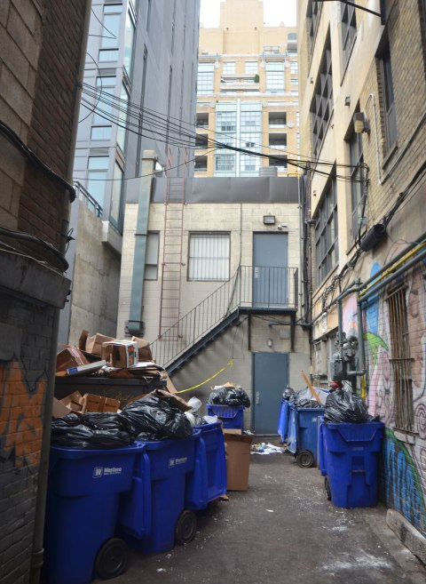 looking down a dead end alley, lots of blue rubbish bins that are slightly overflowing, tall buildings on either side. The back of a two stroey building straight ahead with taller buildings behind