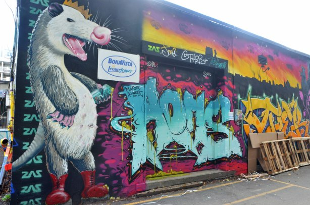 street art of a large possum standing on its hind legs, and standing beside an open door