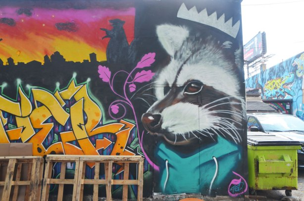 large street art animal, raccoon, in a mural, with a white crown on his head