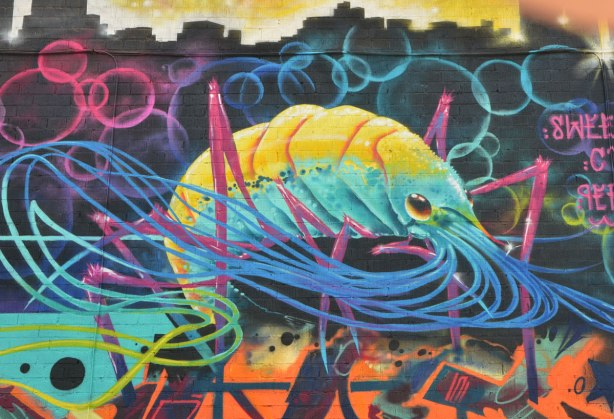 a street art painting of a colourful but realistic squid in yellow, turquoise, and blue, painted on a wall