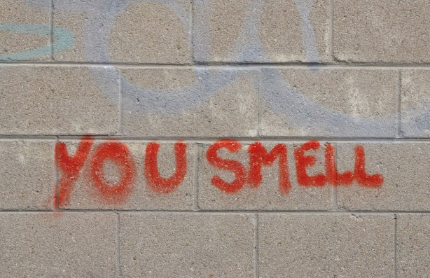 on a concrete block exterior wall, spray painted words that say you smell