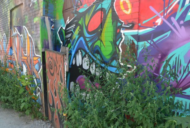 a very colourful and stylized face painted on a wall, large open mouth, looks like fiendish laughter, showing off large white teeth. A large green weed, or small shrub, has started growing in front of it.