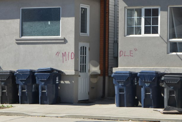 two houses with a small walkway between them. Someone has written mid on one side and dle on the other so together they spell middle