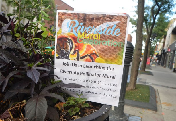 a poster is stuck into a sidewalk planter, advertising a launch of a mural on Saturday 10th September.