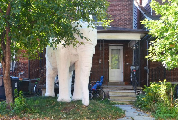 a large white plaster? elephant stands in the frontyard of a house, tree beside it, bikes parked behind it. Residential street.
