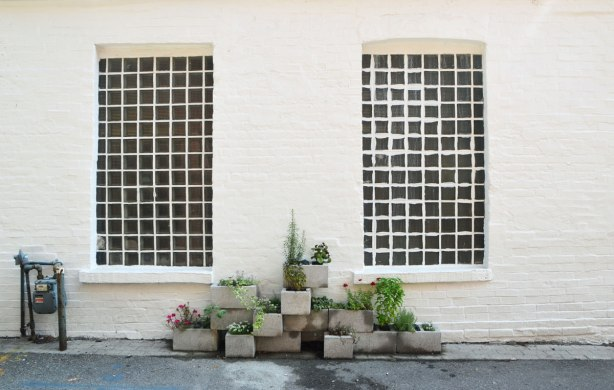 a brick wall painted white with two vertical windows with metal grille in small square shapes, also painted white. between the windows on the sidewalk is an arrangement of cement blocks that have been made into planters with greenery and flowers growing in them.
