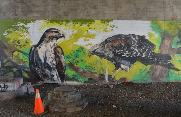 part of a mural under a bridge on the Beltline path, by StART, two hawks on the ground.