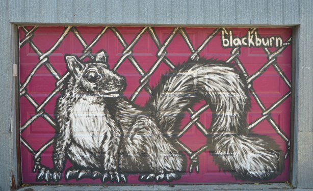 a squirrel mural by blackburn. greyish brown squirrel on magenta background, fills the garage door