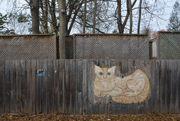 painting of a beige and light brown cat, lying with its head up and tail wrapped around its body, painted on a wooden fence outside