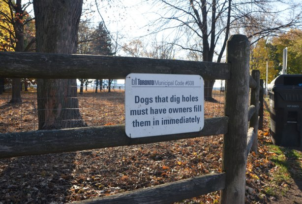 a wood fence around a dog park, in autumn with lots of leaves on the ground, on the fence is a white sign with black letters re the Toronto municipal code 608,