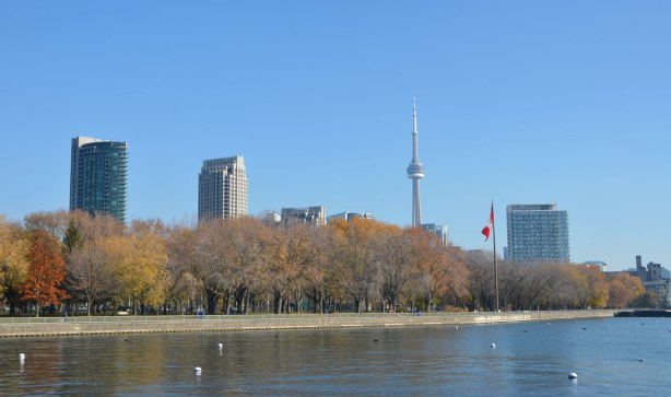 Lake Ontario in the foreground, trees in Coronation Park in the middle and Toronto skyline in the distance with the CN Tower and a large Canadian flag.