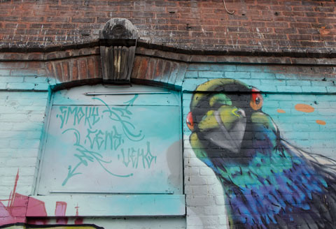 part of a large mural, a parrot head, and the signatures of the street artists who created the mural - Smoky, Cens and Vemo