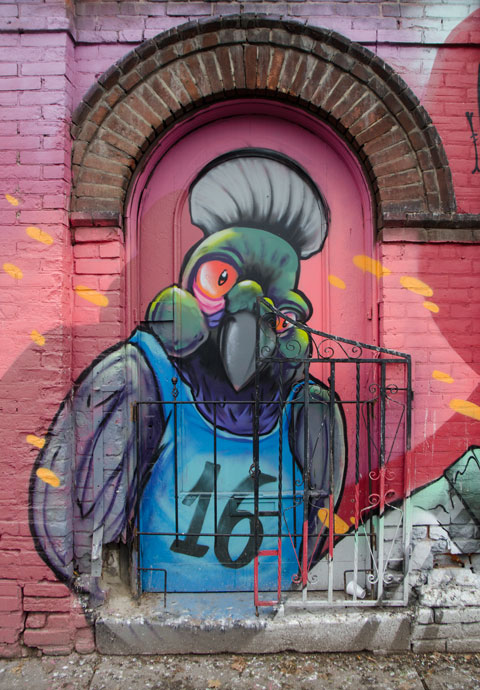 part of a larger mural of a parrot like bird upright, wearing a sleeveless T-shirt with the number 16 on it.