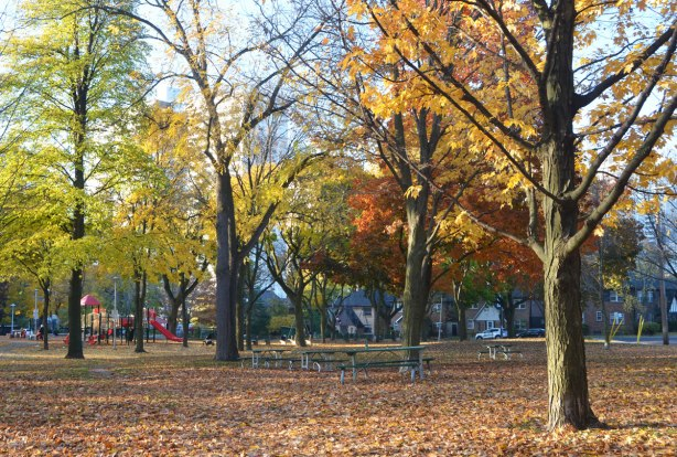 park in the fall, leaves on the ground, trees still with some leaves in oranges, rusts, and yellows, playground in the distance