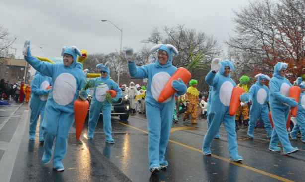 Santa Claus parade - people walking in the parade dressed in large blue and white rabbit costumes, all carrying large stuffed carrots.