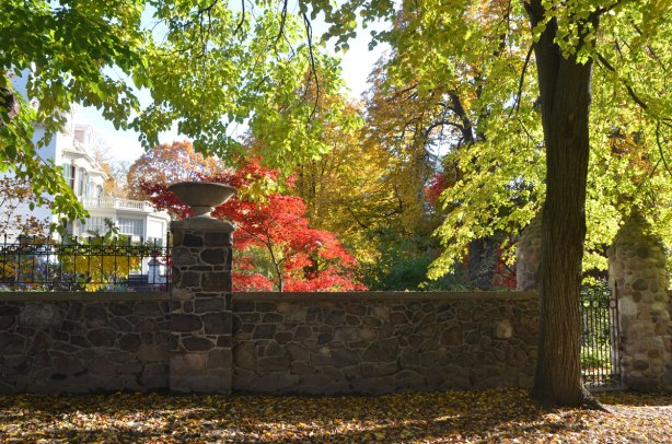 a stone fence with a metal gate, large trees, autumn leaves