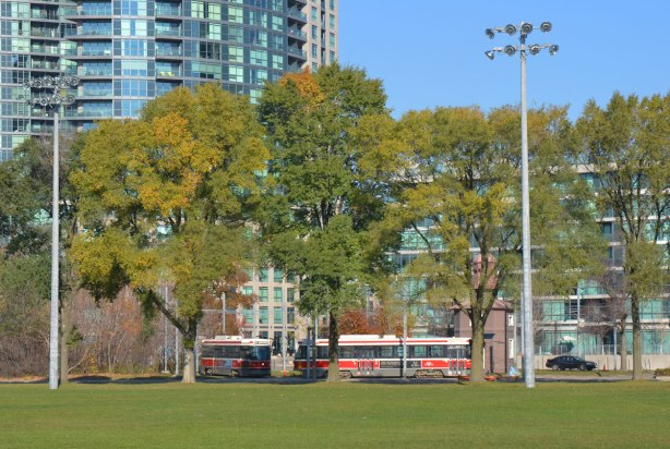 Looking across the outfield of a baseball diamond towards a street. A line of mature trees by the street with two red and white TTC streetcars on the street, condo towers behind.