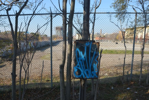 a box beside a fence that has been scrawled over with blue spray paint. Behind it is a fence around a vacant empty lot. There are some small trees growing in front of the fence.