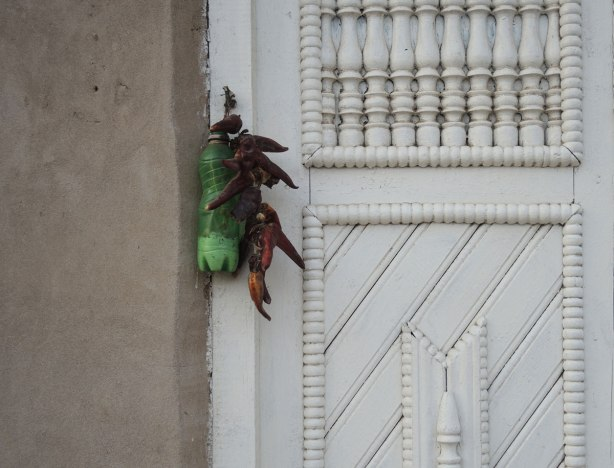 a string of chilis and a green pop bottle partly filled with salt, hanging beside a white wood door