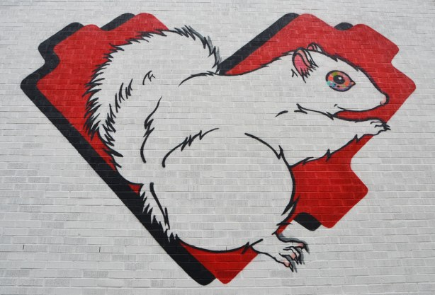 a large mural on white wall of a red lovebot heart and on the heart is a large albino squirrel (white squirrel) with pinkish eyes and ears.