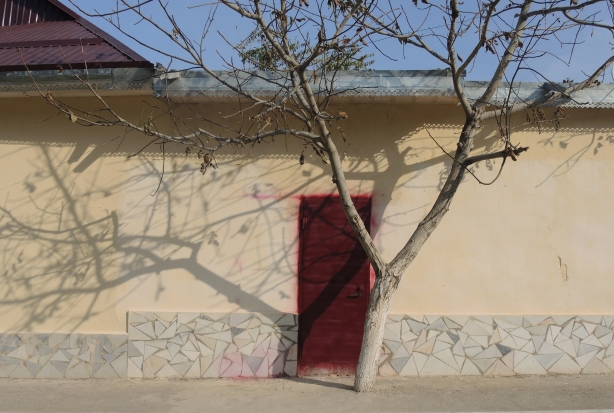 nurata_tree_red_door