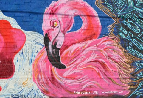 large pink flamingo painted on a wall, part of mural of 4 pink flamingos by Katia Engell