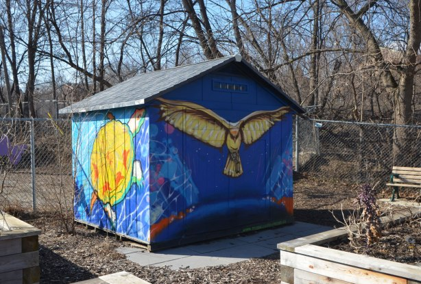 a small wood shed sits in a community garden.  Two sides can be seen, both painted with a mural by MOnica on the Moon.  One side is a bright yellow and orange turtle in blue water and the other is a gold and brown bird with its wings open (owl? hawk?) on a bright blue sky background