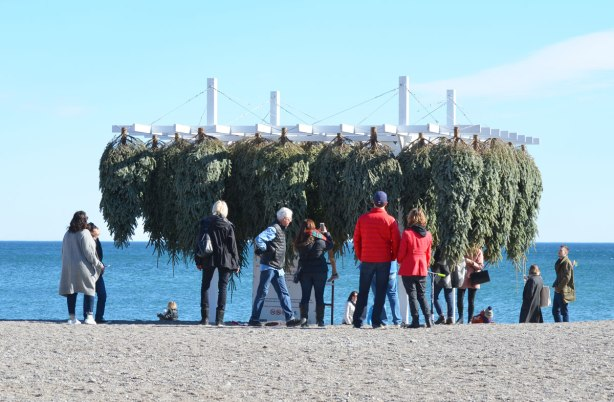 on the beach, people in winter jackets stand around looking at an art installation that consists of evergreen trees, Christmas trees, hung upside down.