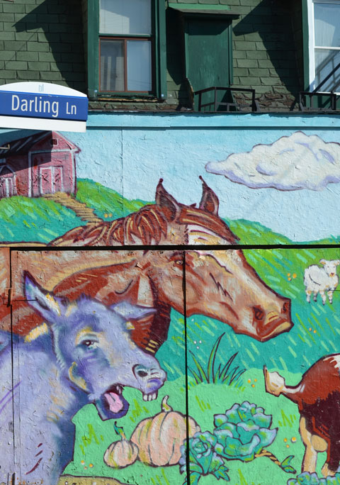 on Darling Lane (street sign in the picture), a mural of two horses, part of a larger mural featuring farm animals