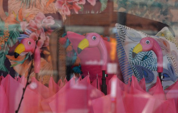 three bright flamingo heads as umbrella handles in a shop window. Pink flamingos and pink umbrellas.