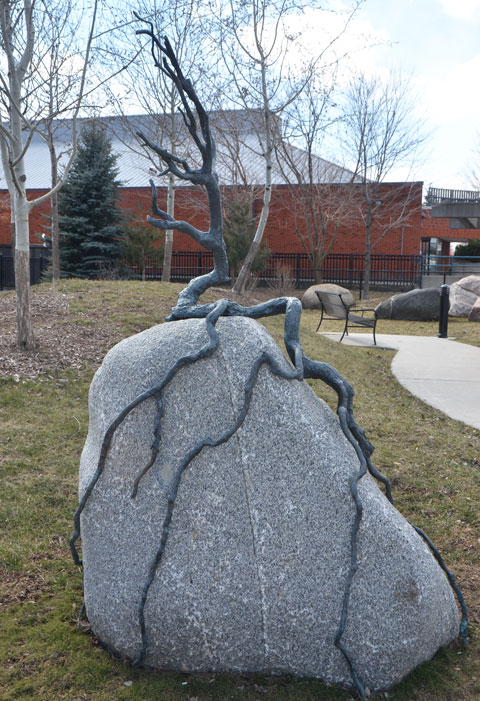 small sculpture in a park of a sapling on a rock with its roots growing over the surface of the rock