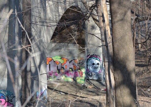 graffiti under the arches of a bridge, white skull painting, lots of trees, winter time but no snow. No leaves on the trees, brown ground.