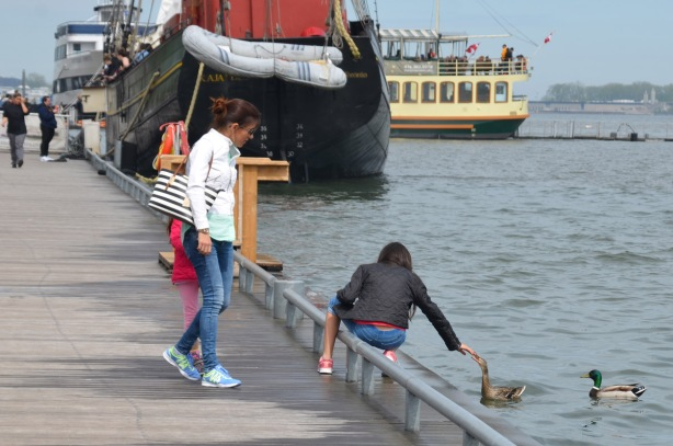 a girl sits on the rail between the walkway on the waterfront and the water while she reaches a hand out towards a duck. Her mother and younger sister watch.