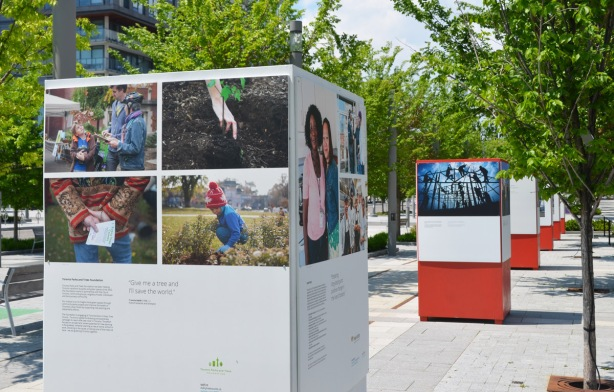 a set of four photos about planting trees on the side of a square pillar, one of many pillars that are arranged in a line on the sidewalk.