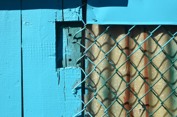 chain link fence nailed to a bright blue wood fence, corrugated plastic behind the chain link