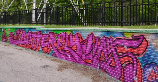 street art on a low retaining wall that says butterflyways in bright pink letters