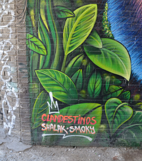 part of a large colourful mural by clandestinos smoky and shalak - lareg greenleaves with their signature