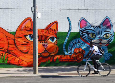 a cyclist, a black man in a white t-shirt, rides past a mural of a large orange cat and a smaller blue cat.