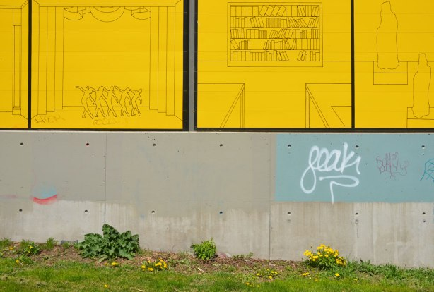 dandelions grow against a concrete wall that has large yellow panels on the upper part
